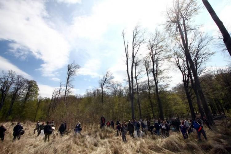 6b8ff0572 Štátne lesy vysadia na Slovensku viac ako 12 miliónov stromčekov ...