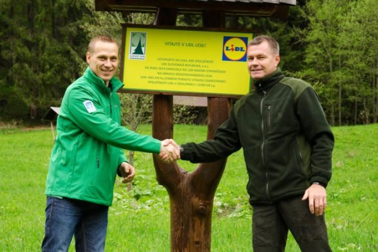56bdad8a6 V Lidl lese rastie už viac ako 1 000 000 stromčekov - FinReport.sk