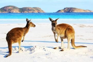 Klimatické zmeny spôsobili najteplejšiu zimu v histórii Austrálie