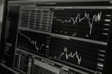 MMF očakáva rast svetovej ekonomiky