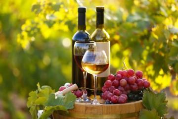 Najlepšie slovenské vína