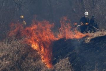 Za posledný mesiac zhorelo v Bolívii pre vypaľovanie lesov územie veľké ako Švajčiarsko