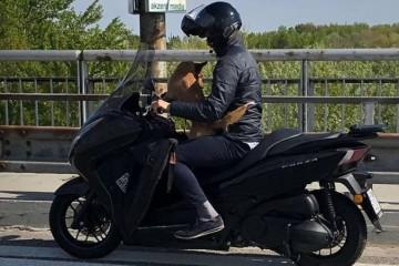 Foto: Policajti v Bratislave riešili kuriózny prípad, stopli motocyklistu so psom
