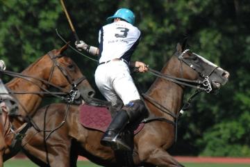 Konské pólo: Šport s dávkou aristokracie