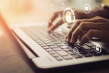 Takmer dve tretiny firiem chcú v súčasnosti posilniť svoju konektivitu, ukazuje prieskum