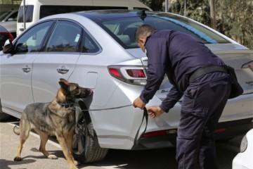 USA poslali do Jordánska psy vycvičené na hľadanie výbušnín, zomierajú pre zlú starostlivosť